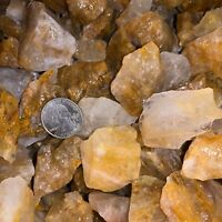 3000 Carat Lots of Citrine Rough Plus a FREE Faceted Gemstone!