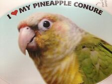 Pineapple Conure Parrot Exotic Bird Vinyl Decal Bumper Sticker