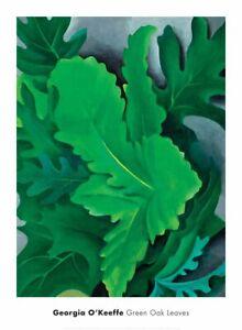 Green Oak Leaves, 1923 by Georgia O'Keeffe Art Print Tree Leaf Poster 20x30