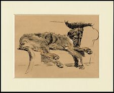IRISH WOLFHOUND DOG AT REST LOVELY PRINT MOUNTED READY TO FRAME
