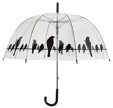 Fallen Fruits Transparent Umbrella - Birds on Wire