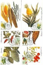 Vatican City Sc# 910: Plants of the New World, 6 Maxi Cards