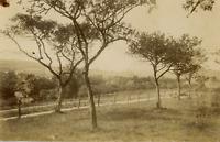 A.C. Champagne, Etude de paysage  Vintage albumen print. Tampon sec du photograp