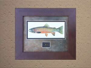 Cutthroat Trout by Joseph Tomelleri Framed and Matted Print