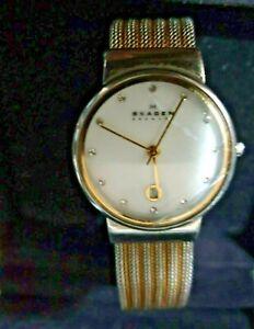 Skagen ladies very dressy Watch. works perfect chrome/gold tone strap