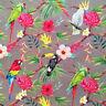 Parrots & toucans fabric, tropical, Hawaiian, bird, cotton, jungle, parakeet