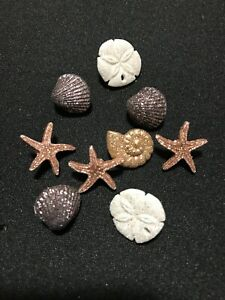 Seashells Novelty Plastic Buttons Sewing Craft supply/Doll Making/Cake Decor