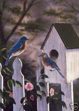 Blue Birds by Rick Kelley Birds Wildlife Print VCS