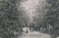 Epping forest road S hildesheimer
