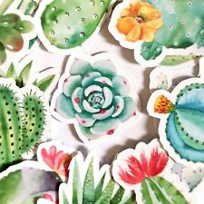 62 Succulent Plant Stickers, Journal, Diary Stickers, Scrapbooking Sticker [USA]