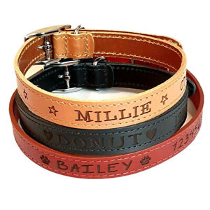 Leather dog collar with name Personalised custom Design Your Unique Pet Id Tag