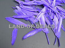 100 Purple duck feathers, loose duck feathers, small feathers for crafts decor