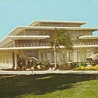 Vintage Postcard Tropical Plants Bradenton Florida