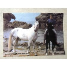 "PABLO HERMOSO de MENDOZA et ses chevaux ""CAGANCHO"" et ""CHICUELO"" Rejoneador RARE"