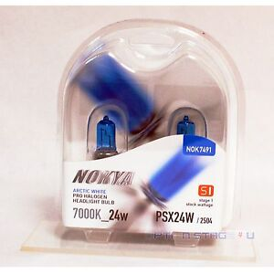 Nokya Arctic White PSX24W / 2504 Halogen Headlight Fog light bulb 7000K