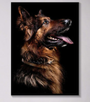Dog German Shepherd Animal Canvas Wall Art  Painting Posters Prints Picture Dec