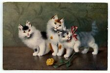 ILLUSTRATEUR SPERLICH. CHAT. CAT. KATZE.  CHATON. KITTEN  .