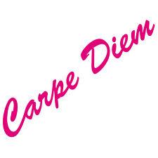 20cm pink Carpe Diem Schriftzug Aufkleber Tattoo Auto Tür Fenster Deko Folie