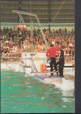 Netherlands Postcard - Dolfinarium Harderwijk B.V    T723