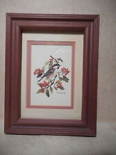 Framed Matted Print Picture   Chickadee Bird on Berry Branch   Signed