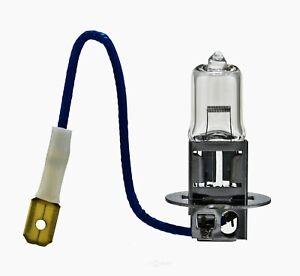Cornering Light-Fog Light Bulb Hella H3 130W