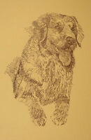 YOUNG GOLDEN RETRIEVER DOG ART PRINT #58 Stephen Kline adds your dogs name free.