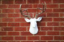 White Resin Deer Head Faux Taxidermy XL