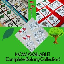 Montessori Nomenclature 3-Part-Cards BOTANY SET