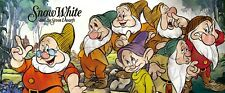 300 Piece Jigsaw Puzzle Disney Snow White and Seven Dwarfs Cute Little Character
