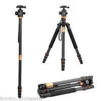 QZSD Q999C Pro Tripod Monopod Carbon Fiber Ball Head for Camera DSLR Camcorder