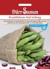 Dürr Buschbohnen Red Kidney für Salate und Suppen (Chilli con Carne SAMEN Bohnen