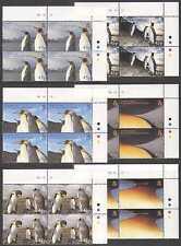 South Georgia 2005 PENGUINS/Birds CONTROL BLKS n15122b