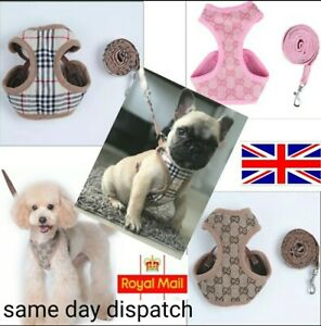 PUPPY Dog Luxury HARNESS & LEAD SET Padded Breathable Puppy & Small Dog Set