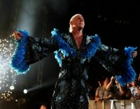 Nature Boy Ric Flair Wrestling WWE Unsigned 8x10 photo (E)
