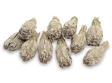 Premium Quality Californian White Sage Smudge Sticks, mini