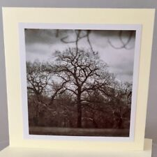 Unique handmade Tree wet plate style greeting card with pro print photograph