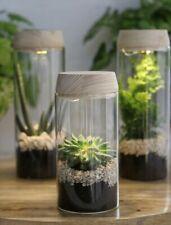 NaDeco LED Pflanzenglas h.18 cm Ø8  Flaschengarten  Biotopglas  Pflanzenterrariu