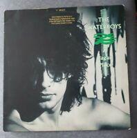 The Waterboys - A Pagan Place- Island Records 90190- PROMO Vinyl LP rare
