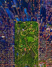 New York City Central Park Pop Art Canvas 16 x 20   #6993
