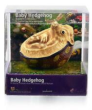 Ceramic Baby Hedgehog Garden Outdoor/Indoors SALE Ornaments Gift