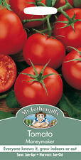 Mr Fothergills Tomato Moneymaker Seed