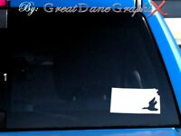 Kansas Duck Hunting State Vinyl Decal Sticker/ Color-HIGH QUALITY