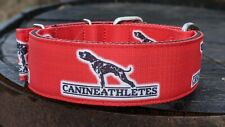 """New Canine Athletes Heavy Duty Red 2"""" Nylon Working Dog Collar Pit Bull"""