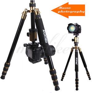Zomei Z888 Portable Quick Release Pro Tripods Monopod+BallHead for DSLR Camera