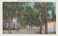 LAM(Z) Valdosta, GA - Ocean Pond Club House - Exterior and Beach View
