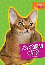 Abyssinian Cats Favorite Cat Breeds