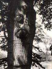 """Pierre et Agnès Ligey / 2 photographies N/B """"Métamorphose"""" arbre, expressionisme"""