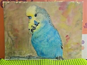 Watercolour Painting-Morena Artina- Budgie-Budgerigar-Handpainted-Unique-2013