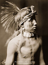 Large Reprint Vintage Native American PHOTO Show As He Goes APACHE INDIAN Curtis