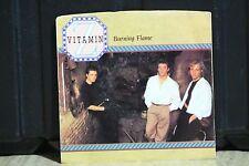 VITAMIN Z 45 RPM PIC SLEEVE RECORD